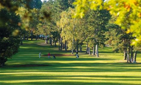Golf De Dijon Bourgogne